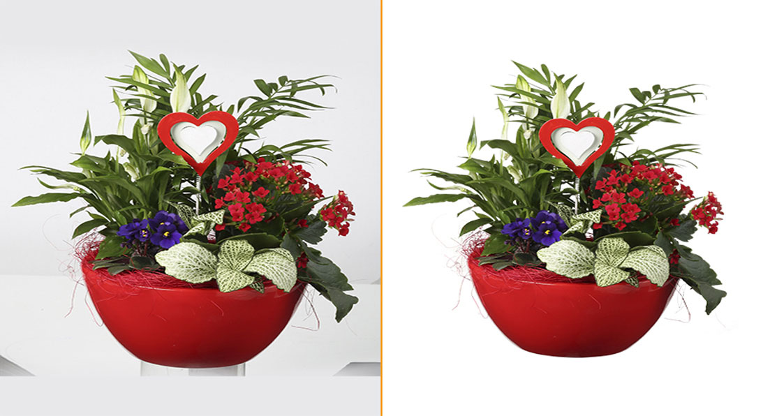 How to Enlarge Your Profit Through Photo Editing Services?