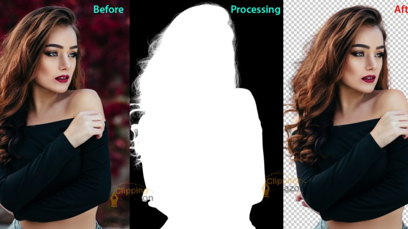 Techniques Of Image- Masking And Its Variants