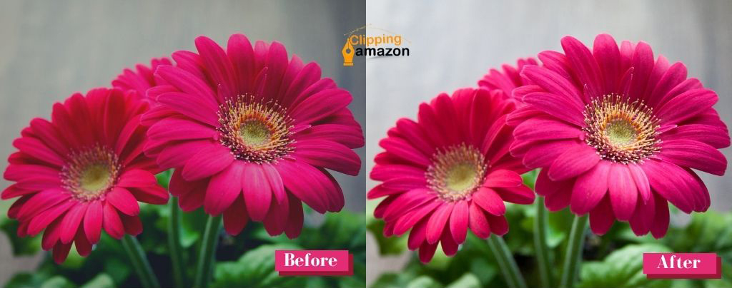 flower-photo-editing-services