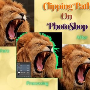 Clipping Path On PhotoShop: Make Your Images Attractive