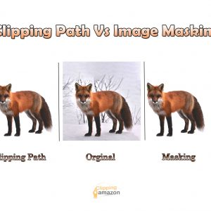 What is the Difference Between Clipping Path Vs Mask? [2021]